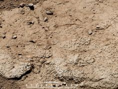 NASA - Cumberland Target for Drilling by Curiosity Mars Rover Curiosity Mars, Curiosity Rover, Mars Project, Mars Science Laboratory, Solar System Exploration, Astronomy Science, Space Travel, The Martian, Spacecraft