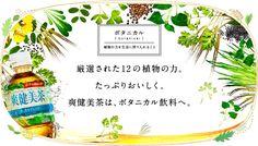 厳選された12の植物の力。 たっぷりおいしく。 爽健美茶は、ボタニカル飲料へ。