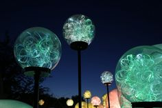 Whizz Pops, Bruce Munro: Light at Franklin Park Conservatory. Columbus, OH Photo by Mark Pickthall