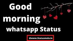is post main maine aapke sath kuch good morning whatsapp status share kiye hai. Love Status Whatsapp, Status Hindi, Deep Love, Sad Love, Morning Status, Broken Love, Good Morning Wishes, Romantic Love, Viral Videos