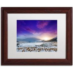 Trademark Fine Art Almost There Canvas Art by Philippe Sainte-Laudy, White Matte, Wood Frame, Size: 16 x 20, Purple