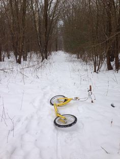 Adventure time! winter scoot on SwiftyONE