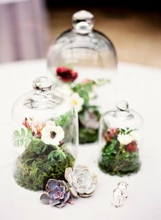 Accents of cloches on tables