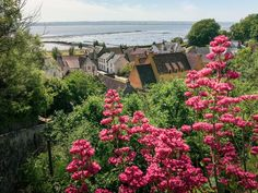 Travel Guide to charming Culross in Fife : Scotland Traveloholic Medieval Houses, Medieval World, Medieval Town, Crieff Scotland, Fife Scotland, Saint Kentigern, Unique Buildings, Old London, Scotland Travel