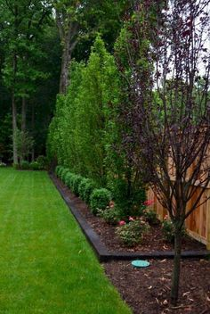 Lovely Backyard Landscaping Ideas On A Budget backyard landscaping landscaping garden landscaping Privacy Fence Landscaping, Large Backyard Landscaping, Backyard Ideas, Fence Ideas, Acreage Landscaping, Backyard Landscaping Privacy, Privacy Trees, Diy Fence, Back Yard Privacy Ideas