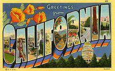 California                                                                                                                                                                                 More