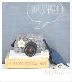 Maybe when I have a better camera...oh snap dslr camera cozy  soft gray by bluebirdchic on Etsy, $40.00