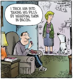 Speed Bump by Dave Coverly