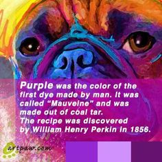The orgin of purple