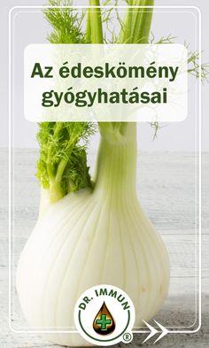 Foeniculum Vulgare, Herb Garden, Health Fitness, Herbs, Baking, Therapy, Fennel, Bakken, Herbs Garden