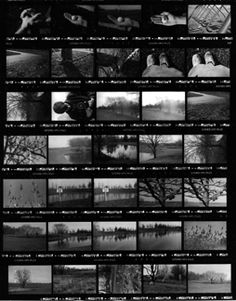 The Contact Sheet layout is artistic -- text can go as white in the black framing -- it has a storyboard feel that suggests a narrative