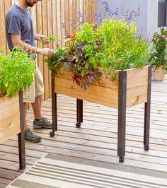 mobiles Hochbeet auf Rollen für Terrasse und Balkon