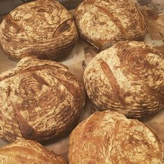 Sockermajas har öppet idag mellan 8-14. Nybakat bröd till frukost! Hjärtligt välkomna