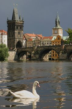 Karl's Bridge, Prague, Czech Republic 🌺🌻✿❀❁For more great pins go to Prague Travel, Prague Czech Republic, Voyage Europe, Beautiful Places To Travel, Romantic Travel, Travel Aesthetic, Day Trip, Budapest, Places To See