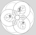 MANDALA Sacred Geometry Art, Mandala Coloring Pages, Circles, How To Make, Crafts, Classroom, Craft Ideas, Play, Mandalas