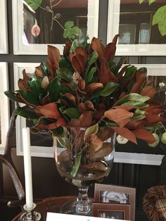 design indulgence: ATLANTA HOLIDAY HOME 2014 magnolia in a glass urn