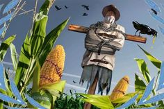 Hoje falaremos sobre algo muito sério que está acontecendo no Brasil e no mundo. Vamos expor a realidade da indústria agropecuária por trás dessa tragédia grega que está para desencadear nos nossos…