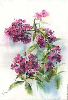 Купить Фиолетовые флоксы резерв. - тёмно-фиолетовый, флоксы, букет цветов, акварель, акварельная живопись