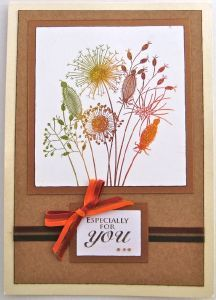 Going To Seed Clear Stamp Set Birthday Cards For Women, Thanksgiving Cards, Get Well Cards, Christmas Angels, Flower Cards, Greeting Cards Handmade, Stampin Up Cards, Making Ideas, Cardmaking