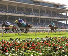 Have you been to any of the races yet at the Del Mar Race Track? #DelMar #Horse #Racing