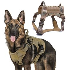 Military Tactical Dog Harness Working Pet Dog Vest With Handle Nylon Bungee Dog Leash Lead Training For Medium Large Dogs – Best Buy Online Store Tactical Dog Harness, Nylons, Pet Dogs, Pets, Military Dogs, Police Dogs, Companion Dog, Dog Safety, Kitty Cats