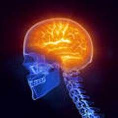 Investigadores valencianos desarrollan nuevas herramientas de ayuda al diagnóstico precoz de enfermedades neurodegenerativas y cerebrales