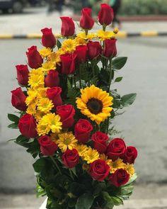 "1,814 curtidas, 22 comentários - Ain.saqr (@ain_saqr) no Instagram: ""#arrangement #صـــ❤ــباحكم ❤❤ بسمة تضيء❤ وجوهكم❤❤بكل خير❤❤صباااااح الورد ❤❤❤"""