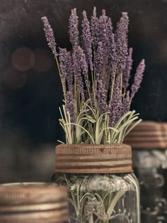 ** Ana Rosa: Lavender in a Ball Mason jar with rusted lid. Just add a bow for a country themed wedding Lavender Cottage, French Lavender, Lavender Scent, Lavender Blue, Lavender Fields, Lavender Flowers, Lavender Diffuser, Lavender Wands, Wild Flowers