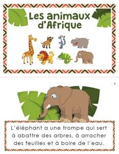 In this reading situation, students will learn different types of information. Web Animal, Safari, Dear Zoo, French Education, French Resources, Teaching French, African Animals, Kindergarten Classroom, Reading Skills