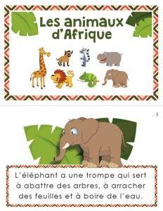Dans cette situation de lecture, les élèves apprendront différentes informations à propos de sept animaux africains. L'enseignant pourra opter pour imprimer la version mini-livre ou le texte sur une seule page. De plus, le texte informatif est accompagné de 10 questions de compréhension de lecture.