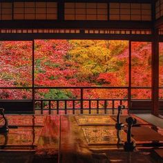 Ruriko-in, Kyoto 瑠璃光院 Autumn Leaves Japan, Kyoto Day Trip, Japan Architecture, Japanese Landscape, Autumn Nature, Colorful Trees, Japan Photo, Kyoto Japan, Japanese Prints
