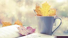 1366x768 Wallpaper leaf, cup, book, autumn