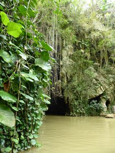 Viñales, Cueva del Indio