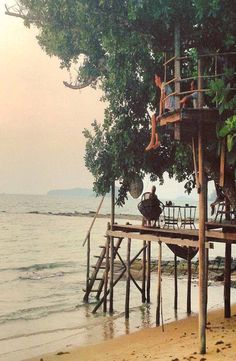 """Koh Ta Kiev, Cambodia :robmolyneux """"Jungle trekking, beach exploring, star gazing and finishing every day off watching the sunset from this treehouse.. While staying on the beautiful jungle filled island of Koh Ta Kiev, Cambodia. A little taster of real deserted island life!"""""""