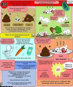 mlle prune: Menu VG - Article récap' << La vitamine B 12 >> Vegan B12, Why Vegan, Vegan Food, Vegetarian Types, Vegetarian Recipes, Vegan Nutrition, Health And Nutrition, Vitamine B12, Dresses