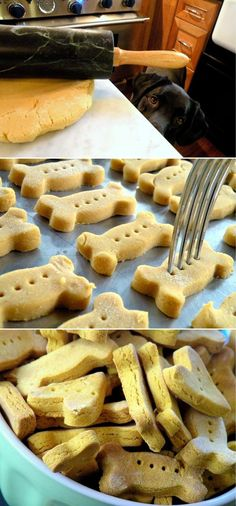 Pumpkin Dog Biscuits Maybe its not related for us :D but its a good recipe :D for our CUTE dogs :D