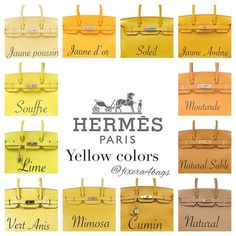 e are some standard Hermes colors and how it looks on the Birkin. I've taken these pictures from various sources and complied them for easy reference. Sac Birkin Hermes, Hermes Bags, Hermes Handbags, Purses And Handbags, Popular Handbags, Cute Handbags, Cheap Handbags, Handbags Online, Luxury Purses