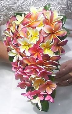 frangipani flower bouquet hawaii