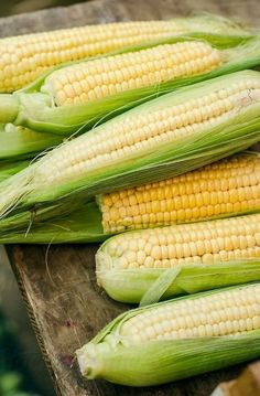 Fresh organic corn on a market by Studio Firma - Stocksy United Fruit And Veg, Fruits And Vegetables, Dietary Guidelines For Americans, Ears Of Corn, Sweet Corn, Kraut, Farm Life, Farmers Market, Food Photo