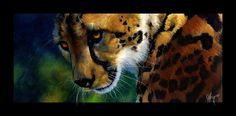 King Cheetah by Novawuff.deviantart.com on @deviantART
