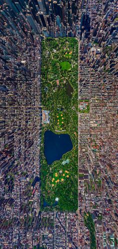 Central Park -NYC
