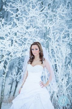 winter wedding trash the dress  My Frosty Bride » COJOPHOTO Winnipeg Wedding Photographer