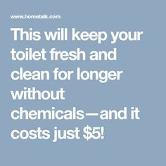 This will keep your toilet fresh and clean for longer without chemicals—and it costs just $5!