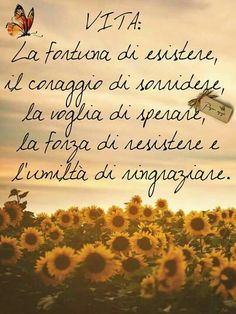 Libertà Life Quotes Relationships, Words Quotes, Sayings, Italian Quotes, Zodiac Quotes, Amazing Quotes, Funny Images, Decir No, Inspirational Quotes