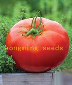 200 unids Super Rare Red Gigante Competencia Herencia Rusa NO-GMO Tyazeloves semillas de Tomate semillas de hortalizas para el jardín de plantas
