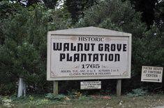 12. Walnut Grove Plantation, Roebuck