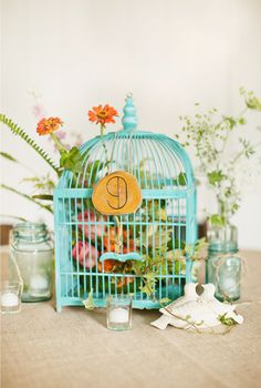 bird cages or mason jars? yes.