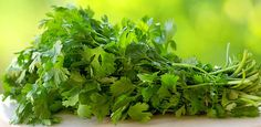 Learn how easy it is to clear up your skin with this parsley tea. Detox Drinks, Healthy Drinks, Slimming Green Tea, Parsley Tea, Regulate Blood Sugar, Bright Green, Recipe Of The Day, Superfood, Turmeric