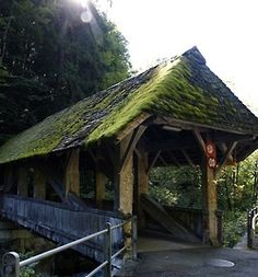 Mossy Roofed Covered Bridge