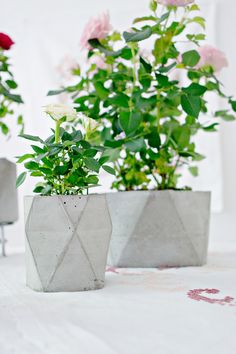 DIY | Geometric Concrete Flower Pot Planter